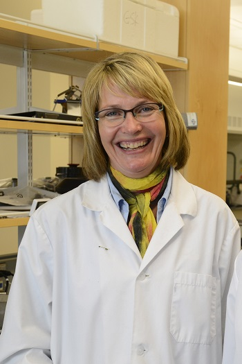 Picture of Shelley Kirychuk, BScN, MSc, BMA, PhD